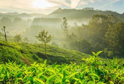 scenic-srilanka